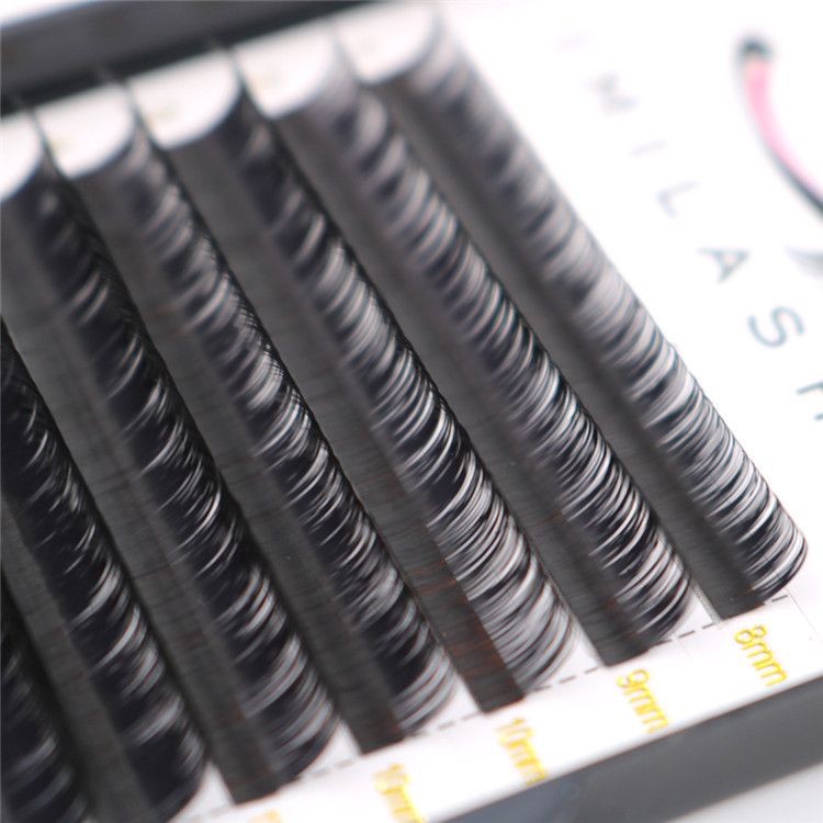 China volume lash extensions near me vendor-L