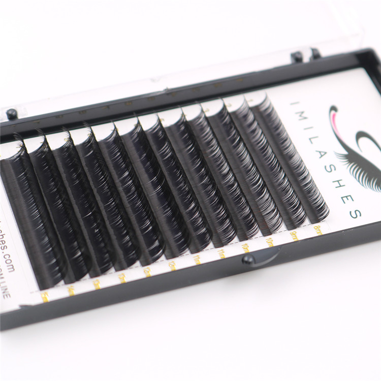 New arrival top quality 0.07 volume eyelash extensions-L